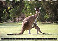 West-Australien (Wandkalender 2019 DIN A2 quer) - Produktdetailbild 4