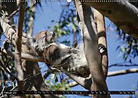 West-Australien (Wandkalender 2019 DIN A2 quer) - Produktdetailbild 2