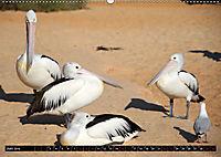 West-Australien (Wandkalender 2019 DIN A2 quer) - Produktdetailbild 6