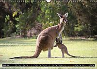 West-Australien (Wandkalender 2019 DIN A3 quer) - Produktdetailbild 4