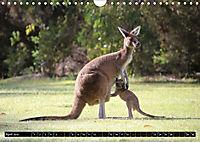 West-Australien (Wandkalender 2019 DIN A4 quer) - Produktdetailbild 4