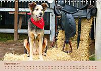 Westernromantik 2019. Impressionen aus dem Wilden Westen (Wandkalender 2019 DIN A4 quer) - Produktdetailbild 9