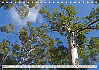 Westliches Australien - Landschaft und Natur (Tischkalender 2019 DIN A5 quer) - Produktdetailbild 5