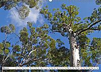 Westliches Australien - Landschaft und Natur (Wandkalender 2019 DIN A2 quer) - Produktdetailbild 5