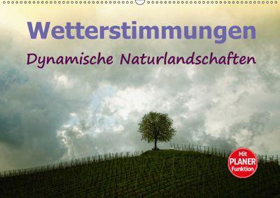 Wetterstimmungen. Dynamische Naturlandschaften (Wandkalender 2019 DIN A2 quer), Liselotte Brunner-Klaus