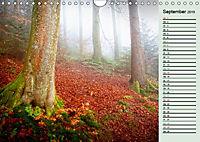 Wetterstimmungen. Dynamische Naturlandschaften (Wandkalender 2019 DIN A4 quer) - Produktdetailbild 9