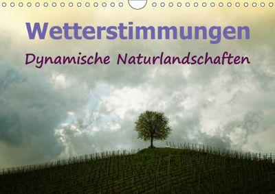 Wetterstimmungen. Dynamische Naturlandschaften (Wandkalender 2019 DIN A4 quer), Liselotte Brunner-Klaus