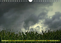 Wetterstimmungen. Dynamische Naturlandschaften (Wandkalender 2019 DIN A4 quer) - Produktdetailbild 11