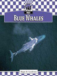 Whales Set 1: Blue Whales, Megan M. Gunderson