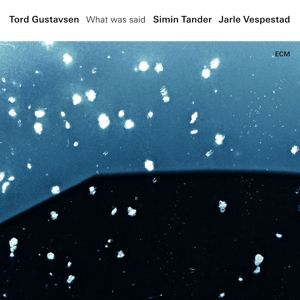 What Was Said, Tord Gustavsen, Simin Tander, Jarle Vespestad