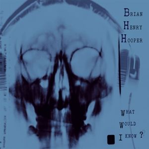 WHAT WOULD I KNOW?, Brian Henry Hooper