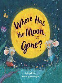 Where Has the Moon Gone?, Hiroyuki Arai