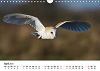 White Birds on the Wing (Wall Calendar 2019 DIN A4 Landscape) - Produktdetailbild 4