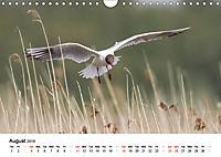 White Birds on the Wing (Wall Calendar 2019 DIN A4 Landscape) - Produktdetailbild 8