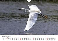 White Birds on the Wing (Wall Calendar 2019 DIN A4 Landscape) - Produktdetailbild 2