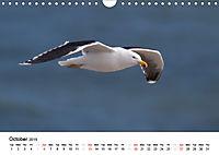 White Birds on the Wing (Wall Calendar 2019 DIN A4 Landscape) - Produktdetailbild 10