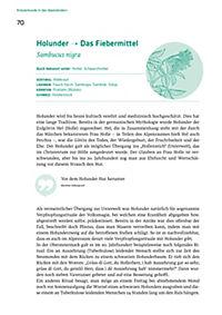 Wickel, Salben und Tinkturen - Produktdetailbild 4