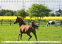 Widdersdorf - Boomtown im Kölner Westen (Tischkalender 2019 DIN A5 quer) - Produktdetailbild 4