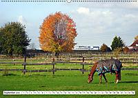Widdersdorf - Boomtown im Kölner Westen (Wandkalender 2019 DIN A2 quer) - Produktdetailbild 9
