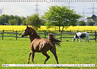 Widdersdorf - Boomtown im Kölner Westen (Wandkalender 2019 DIN A3 quer) - Produktdetailbild 4