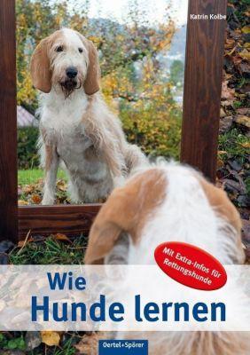 Wie Hunde lernen - Katrin Kolbe |