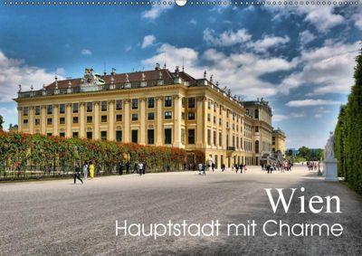 Wien - Haupstadt mit CharmeAT-Version (Wandkalender 2019 DIN A2 quer), Thomas Bartruff