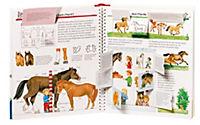 Wieso? Weshalb? Warum? Band 21: Alles über Pferde und Ponys - Produktdetailbild 2