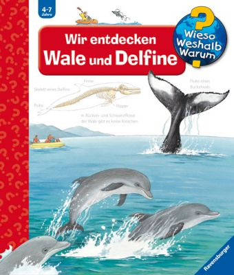 Wieso? Weshalb? Warum? Band 41: Wir entdecken Wale und Delfine, Doris Rübel