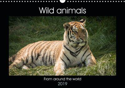 Wild animals from around the world (Wall Calendar 2019 DIN A3 Landscape), Alan Tunnicliffe