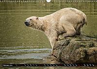 Wild animals from around the world (Wall Calendar 2019 DIN A3 Landscape) - Produktdetailbild 2