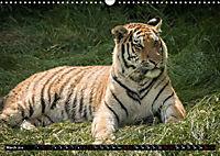 Wild animals from around the world (Wall Calendar 2019 DIN A3 Landscape) - Produktdetailbild 3