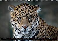 Wild animals from around the world (Wall Calendar 2019 DIN A3 Landscape) - Produktdetailbild 6