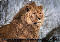 Wild animals from around the world (Wall Calendar 2019 DIN A3 Landscape) - Produktdetailbild 9
