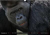 Wild animals from around the world (Wall Calendar 2019 DIN A3 Landscape) - Produktdetailbild 11