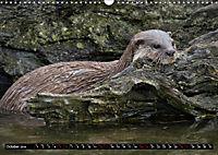 Wild animals from around the world (Wall Calendar 2019 DIN A3 Landscape) - Produktdetailbild 10
