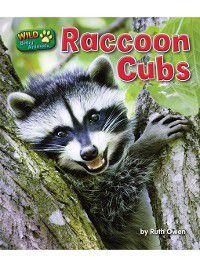 Wild Baby Animals: Raccoon Cubs, Ruth Owen