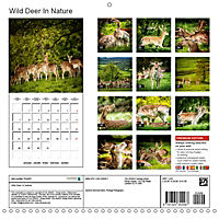 Wild Deer In Nature (Wall Calendar 2019 300 × 300 mm Square) - Produktdetailbild 13