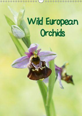 Wild European Orchids (Wall Calendar 2019 DIN A3 Portrait), Claudia Pelzer