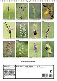 Wild European Orchids (Wall Calendar 2019 DIN A3 Portrait) - Produktdetailbild 13