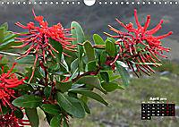 Wild Flowers of the World (Wall Calendar 2019 DIN A4 Landscape) - Produktdetailbild 4