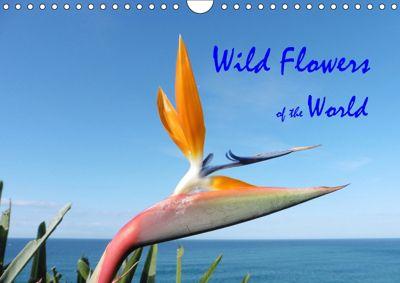 Wild Flowers of the World (Wall Calendar 2019 DIN A4 Landscape), Howard Beck