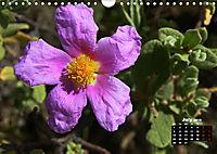 Wild Flowers of the World (Wall Calendar 2019 DIN A4 Landscape) - Produktdetailbild 7