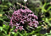 Wild Flowers of the World (Wall Calendar 2019 DIN A4 Landscape) - Produktdetailbild 10