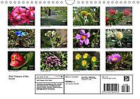 Wild Flowers of the World (Wall Calendar 2019 DIN A4 Landscape) - Produktdetailbild 13