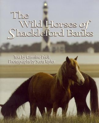 Wild Horses of Shackleford Banks, Scott Taylor, Carmine Prioli
