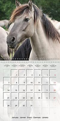 Wild horses today (Wall Calendar 2019 300 × 300 mm Square) - Produktdetailbild 1