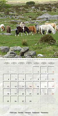 Wild horses today (Wall Calendar 2019 300 × 300 mm Square) - Produktdetailbild 2