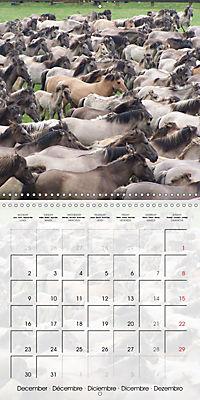Wild horses today (Wall Calendar 2019 300 × 300 mm Square) - Produktdetailbild 12