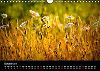 Wild Meadow Scenes (Wall Calendar 2019 DIN A4 Landscape) - Produktdetailbild 10