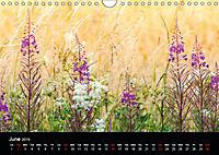 Wild Meadow Scenes (Wall Calendar 2019 DIN A4 Landscape) - Produktdetailbild 6